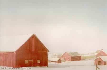 Snow Covered Barns